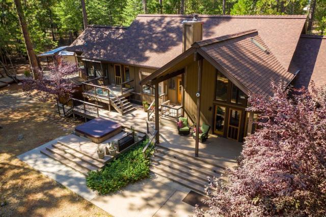 24600 Shake Ridge Road, Volcano, CA 95689 (MLS #19055137) :: Heidi Phong Real Estate Team