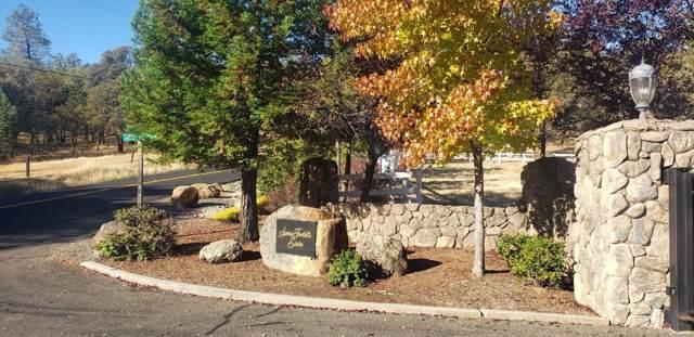 0 Sierra Estates Drive, Auburn, CA 95602 (MLS #19055777) :: Keller Williams - The Rachel Adams Lee Group