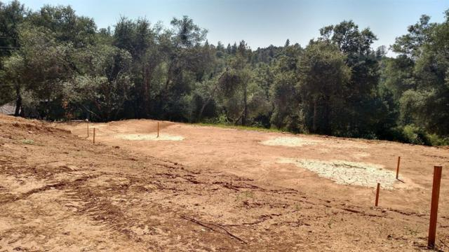 3073 Stagecoach Road, Placerville, CA 95667 (MLS #19056140) :: The MacDonald Group at PMZ Real Estate