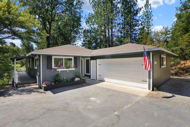 13850 Shadow Glen Ct, Pine Grove, CA 95665 (MLS #19056249) :: Heidi Phong Real Estate Team