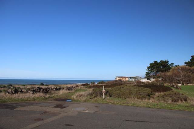 81 Coral Point, Whitethorn, CA 95589 (MLS #19057144) :: Deb Brittan Team