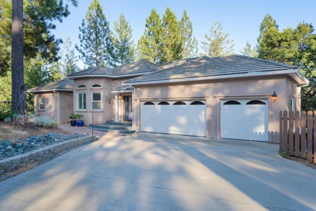 13584 Elderberry Court, Pine Grove, CA 95665 (MLS #19057570) :: Heidi Phong Real Estate Team