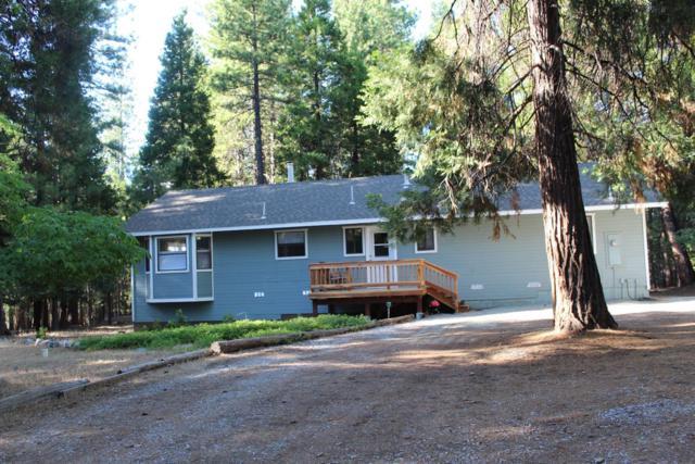 25652 Shake Ridge Road, Volcano, CA 95689 (MLS #19057728) :: Heidi Phong Real Estate Team