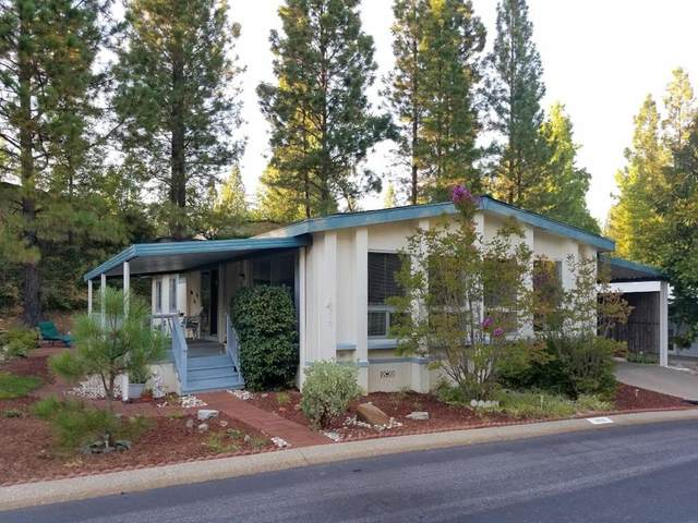 10210 Stone Arch Drive, Grass Valley, CA 95949 (MLS #19059285) :: Heidi Phong Real Estate Team