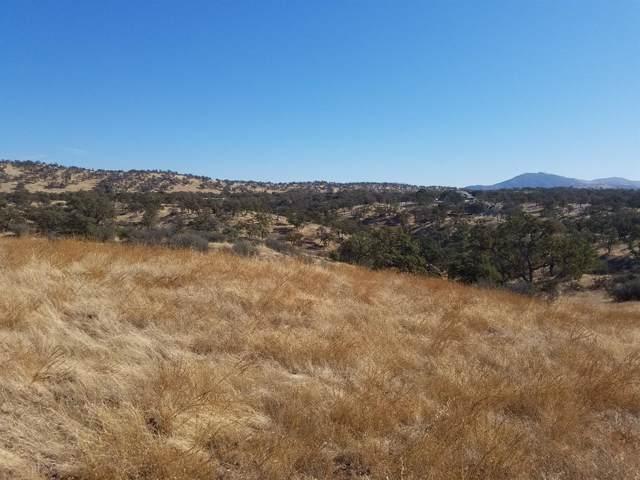 0 Zarzamora, La Grange, CA 95329 (MLS #19074290) :: Folsom Realty