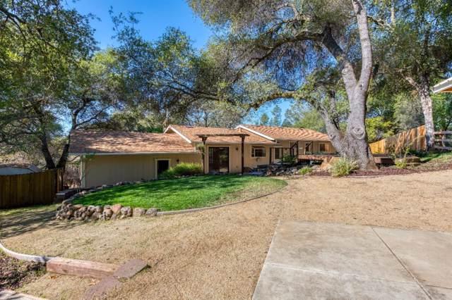4545 Holly Drive, Shingle Springs, CA 95682 (MLS #19075040) :: Heidi Phong Real Estate Team