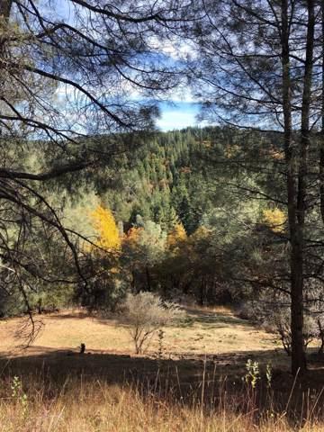 5371 NE Five Spot Road, Pollock Pines, CA 95726 (MLS #19075937) :: Dominic Brandon and Team