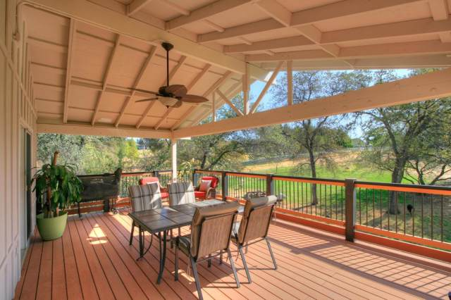 1150 Blossom Trail, Newcastle, CA 95658 (MLS #20001116) :: Heidi Phong Real Estate Team