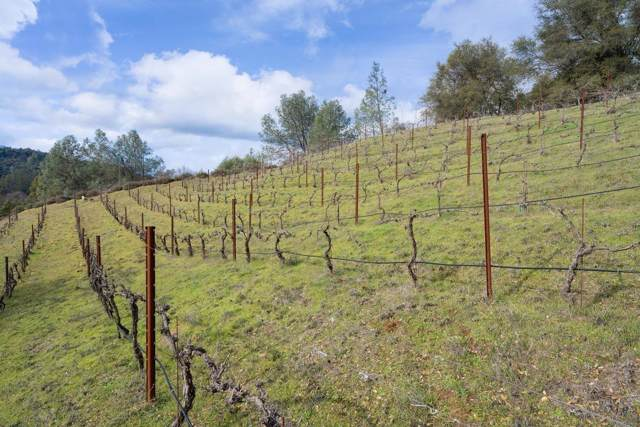 5921 Bayne Road, Coloma, CA 95613 (MLS #20002897) :: The MacDonald Group at PMZ Real Estate