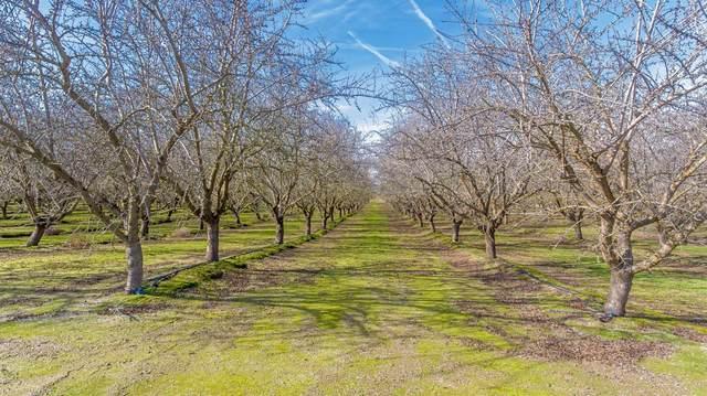 0 Buchanan Hollow Road, Le Grand, CA 95333 (MLS #20008624) :: The Merlino Home Team