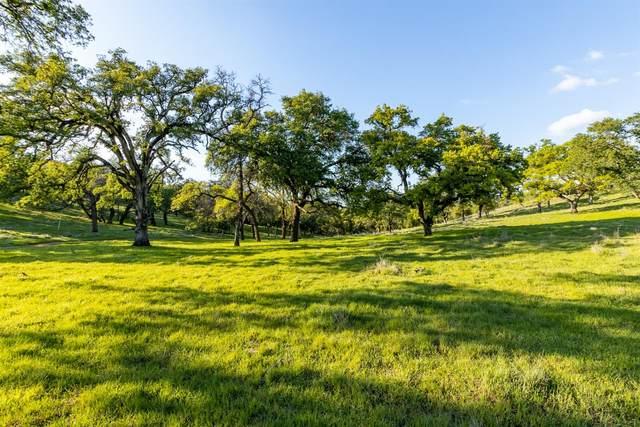0 Blue Oak Ranch Road, Auburn, CA 95602 (MLS #20016840) :: Heidi Phong Real Estate Team