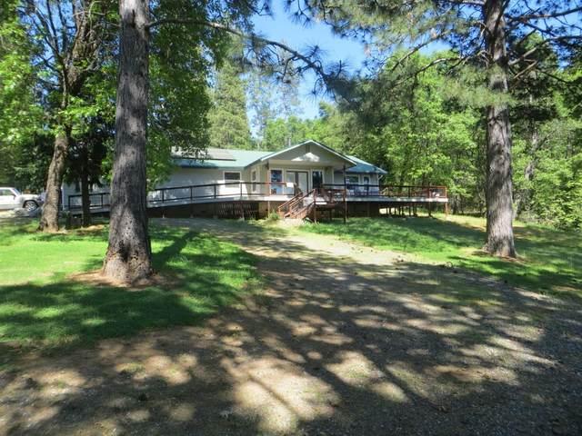 485 Smitty Lane, West Point, CA 95255 (MLS #20025387) :: Keller Williams - The Rachel Adams Lee Group