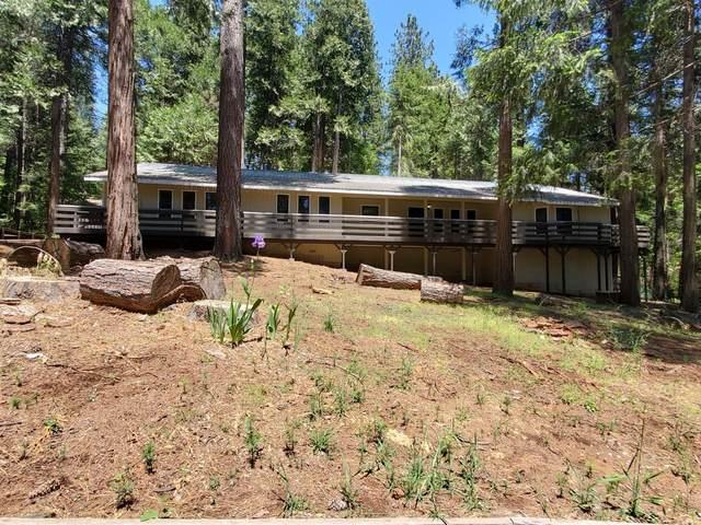 6481 Greenleaf Lane, Pollock Pines, CA 95726 (MLS #20028871) :: Keller Williams - The Rachel Adams Lee Group