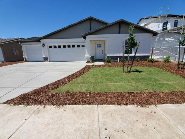 1636 Ryegrass Way, Los Banos, CA 93635 (MLS #20029538) :: The Merlino Home Team