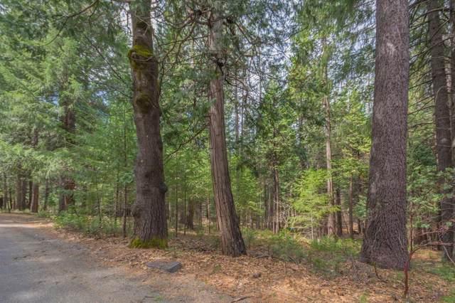 4680 Jenkinson Circle, Pollock Pines, CA 95726 (MLS #20034663) :: The Merlino Home Team