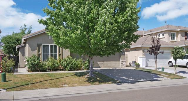 8942 Terracorvo Circle, Stockton, CA 95212 (MLS #20036815) :: Dominic Brandon and Team