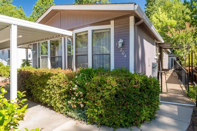10204 Dalewood Way, Grass Valley, CA 95949 (MLS #20039898) :: Dominic Brandon and Team