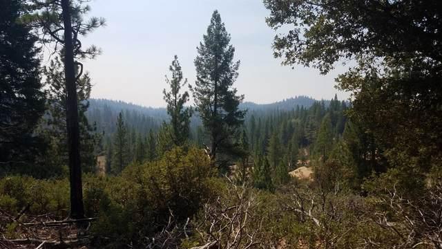 17914 Red Dog Road, Nevada City, CA 95959 (MLS #20048435) :: Keller Williams - The Rachel Adams Lee Group
