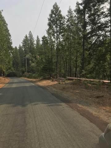 19455 Creek Drive, Pioneer, CA 95666 (MLS #20056042) :: Dominic Brandon and Team