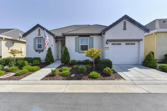 7465 Havenford Way, Sacramento, CA 95829 (MLS #20056954) :: Dominic Brandon and Team