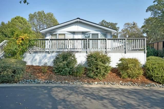 4380 Patterson Drive #203, Diamond Springs, CA 95619 (MLS #20059430) :: The Merlino Home Team