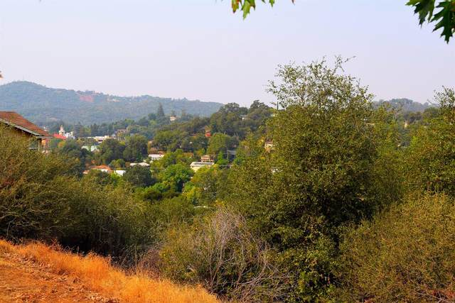 510 Morning Star Drive, Sonora, CA 95370 (#20059739) :: Jimmy Castro Real Estate Group