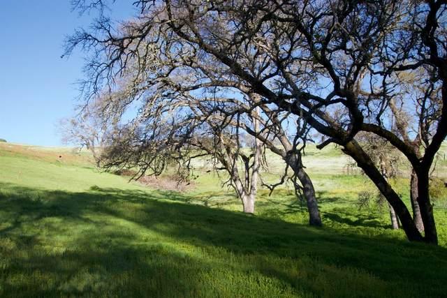 0 David Drive, Sutter Creek, CA 95685 (MLS #20062830) :: eXp Realty of California Inc