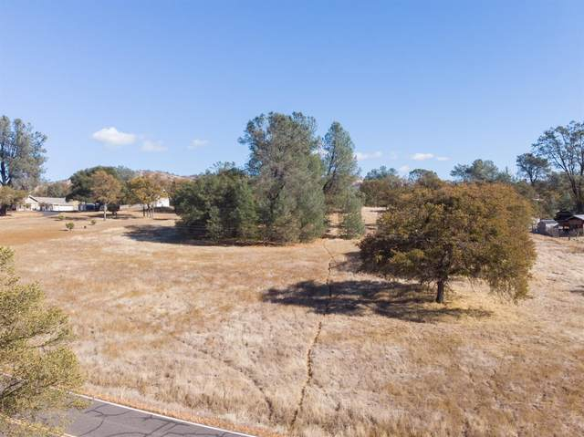 665 Black Creek Drive, Copperopolis, CA 95228 (MLS #20070533) :: 3 Step Realty Group