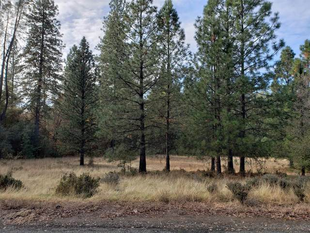 3126 Buckboard Road, Placerville, CA 95667 (#20072223) :: The Lucas Group