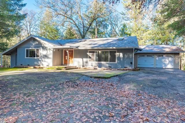 15379 Pioneer Volcano Road, Volcano, CA 95689 (MLS #20073558) :: Paul Lopez Real Estate