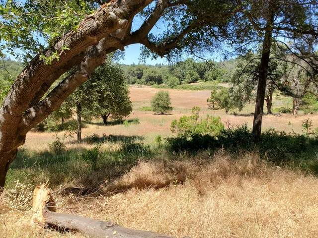 11028 Karen Drive, Grass Valley, CA 95946 (MLS #20081323) :: Keller Williams Realty