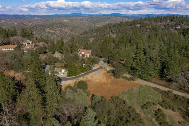 1200 Wilkinson Ct, Placerville, CA 95667 (MLS #221005277) :: 3 Step Realty Group