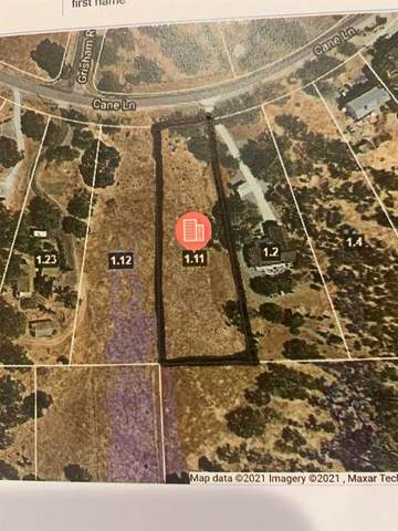 7033 Cane Lane, Valley Springs, CA 95252 (#221008518) :: The Lucas Group