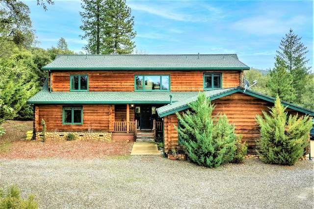 12590 Contini Mine Road, Jackson, CA 95642 (MLS #221008700) :: Live Play Real Estate | Sacramento