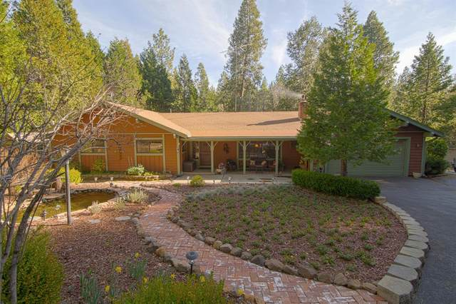 23140 Shake Ridge Rd., Volcano, CA 95689 (MLS #221017088) :: eXp Realty of California Inc