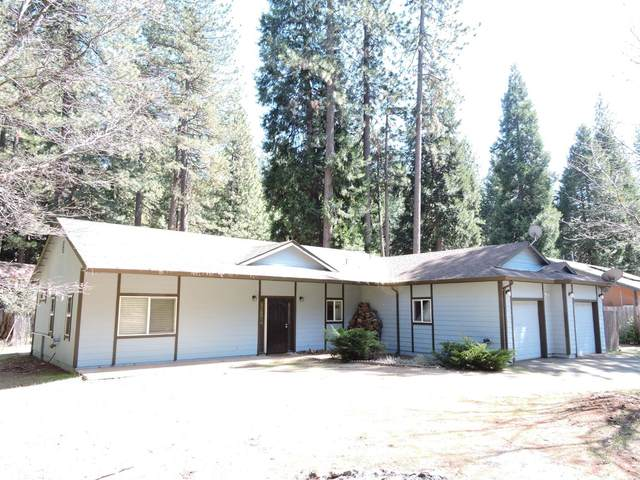 5297 Blue Mountain Drive, Grizzly Flats, CA 95636 (MLS #221021597) :: Keller Williams Realty