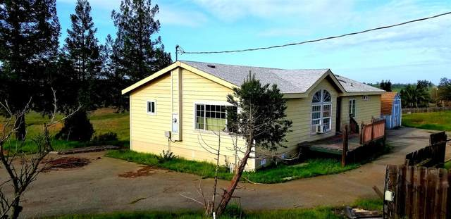 3645 Teepee Court, Ione, CA 95640 (MLS #221022010) :: eXp Realty of California Inc