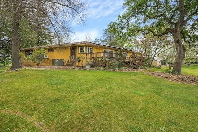 3805 Curran Road, Ione, CA 95640 (MLS #221025078) :: Live Play Real Estate | Sacramento