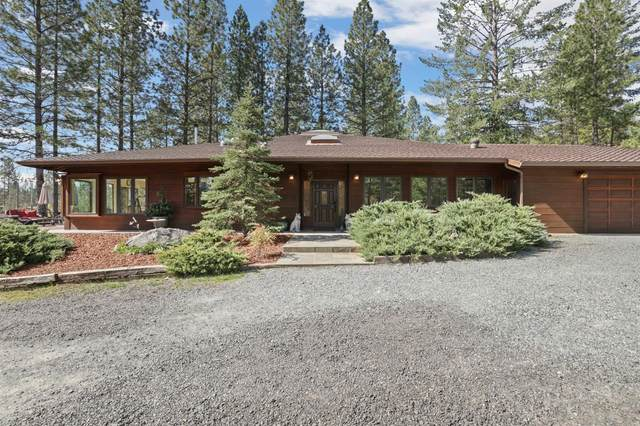10415 Mcmahon, Coulterville, CA 95311 (MLS #221026472) :: eXp Realty of California Inc