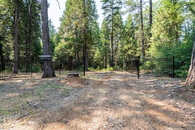 13518 Quaker Hill Cross Road, Nevada City, CA 95959 (MLS #221030144) :: eXp Realty of California Inc