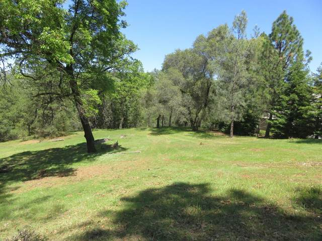 23667 Darkhorse Drive, Auburn, CA 95602 (MLS #221030973) :: Heidi Phong Real Estate Team