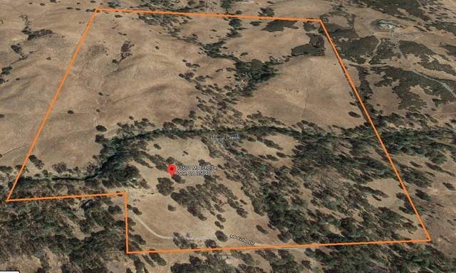 13601 Mount Echo Drive, Ione, CA 95640 (MLS #221032244) :: Heidi Phong Real Estate Team