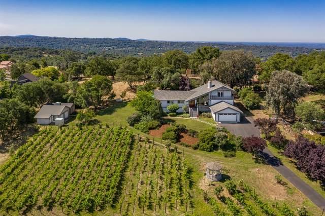 10220 Moran Drive, Auburn, CA 95603 (MLS #221032621) :: Heidi Phong Real Estate Team