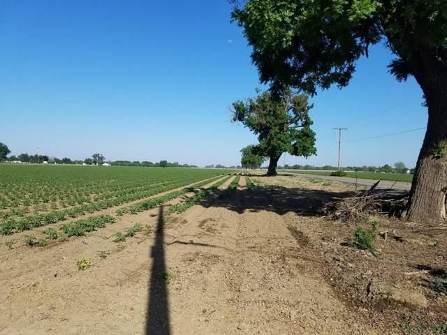 0 County Road 98, Yolo, CA 95697 (MLS #221036121) :: eXp Realty of California Inc