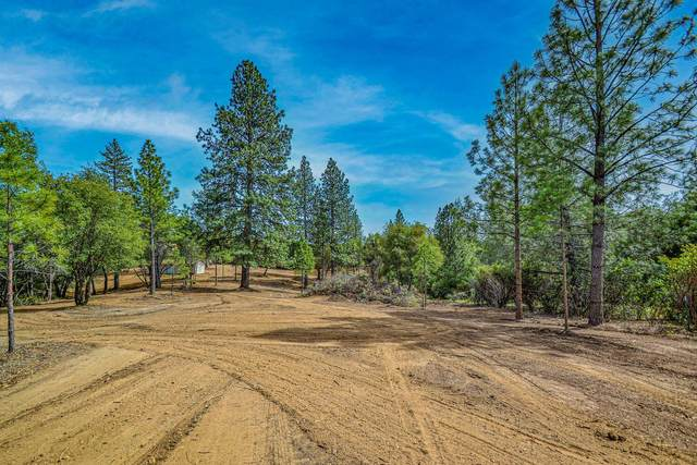 16400 Nina Lane, Fiddletown, CA 95629 (MLS #221040807) :: Heidi Phong Real Estate Team