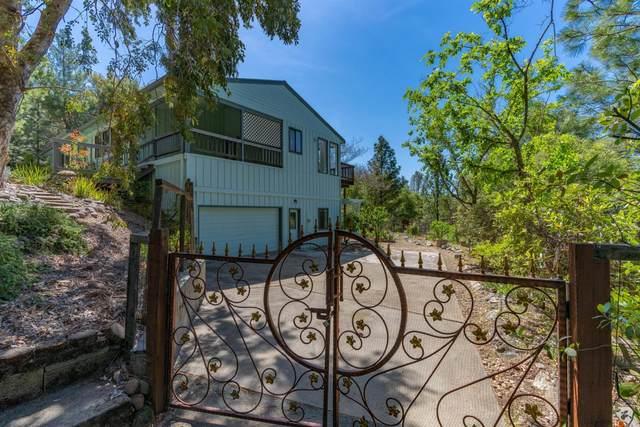 13145 Trent Way, Jackson, CA 95642 (MLS #221041080) :: Heidi Phong Real Estate Team