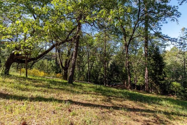 0 Lake View Drive, Colfax, CA 95713 (MLS #221042791) :: Keller Williams - The Rachel Adams Lee Group