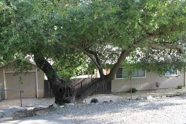 8739 Sunset Avenue, Fair Oaks, CA 95628 (MLS #221043118) :: Heidi Phong Real Estate Team