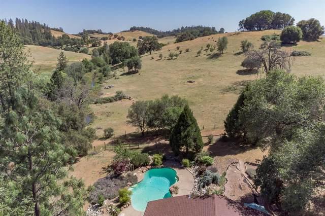 2690 Willow Creek Trail, Cool, CA 95614 (MLS #221049245) :: CARLILE Realty & Lending
