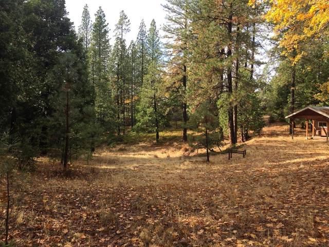 8361 Boondock Trail, Somerset, CA 95684 (MLS #221049367) :: The MacDonald Group at PMZ Real Estate